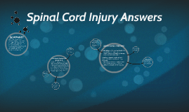 Spinal Cord Injury Answers