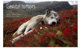 Female and male genital tumors