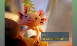 Copy of LA REGENERACIÓN