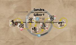 Sandra Menxueiro's Resume