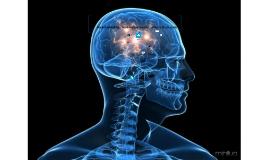 Neuromarketing , motivações incosncientes e irracionais