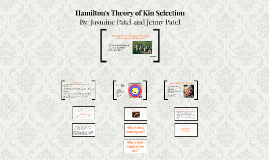 Hamilton's Theory of Kin Selection