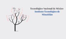 Copy of UNIDAD 4: TRANSPORTACIÓN Y RÉGIMEN ADUANERO