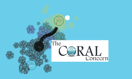 The Coral Concern