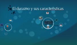 Copy of El durazno
