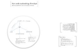 New audit methodology flowchart - 1