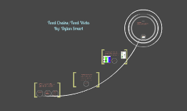 Food Chain:
