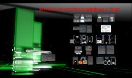 Servicios se pueden implantar en servidores Windows y Linux.