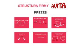 STRUKTURA FIRMY AVITA