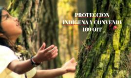 Protección indígena y Convenio 169 OIT