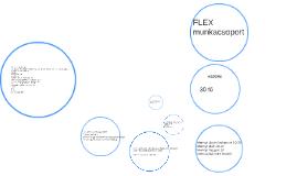 Flex SOS Munkacsoport