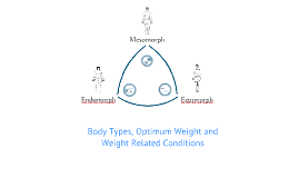 GCSE PE Body Types, Optimum Weight and Weight Related Conditions