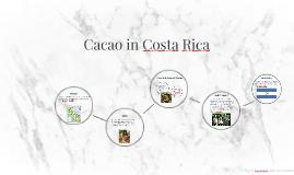 Cacao en Costa Rica