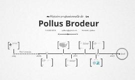 Timeline Prezumé by Pollus Brodeur