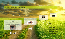 Copy of EL  SENTIDO  DE LA VISTA