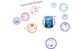 Three Levels of Culture (Hidalgo)