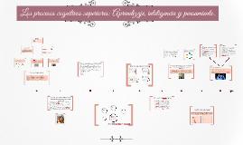 Los procesos cognitivos superiores: Aprendizaje, inteligenci