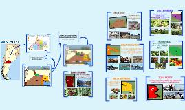 Copy of Actividades Económicas de Río Negro