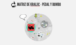Matriz de kraljic - PEDAL Y BATERÍA