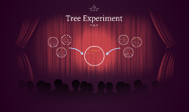The Tree Experiment