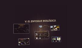 V. Enfoque Biologico.