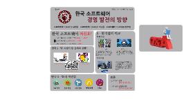 한국 SW 경영 발전의 방향