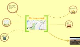 The way to Serengueti