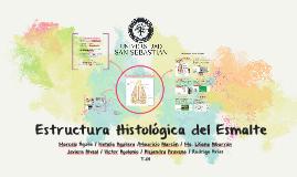 Histología del esmalte
