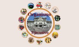 Copy of Organismo Ejecutivo