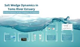 Salt Wedge Dynamics in Toms River Estuary