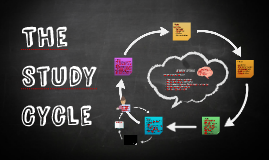 Copy of The Study Cycle