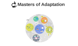 Masters of Adaptation