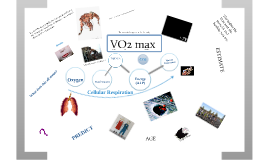 Copy of VO2max:  A kid friendly explanation