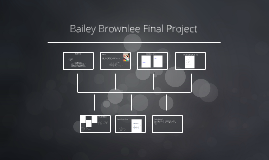 Bailey Brownlee Final Project