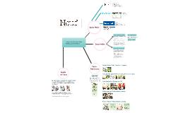 Informe Final al cliente NEUF