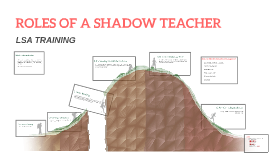 ROLES OF A SHADOW TEACHER