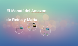 El Manatí del Amazon