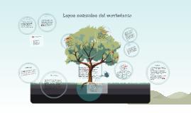 Copy of Copy of Copy of Leyes naturales del movimiento
