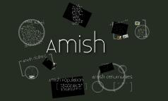 Copy of Amish