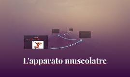 L'apparato muscolatre