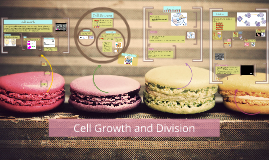 Copy of Cell Growth and Division