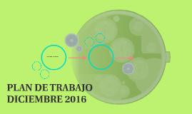 PLAN DE TRABAJO DICIEMBRE 2016