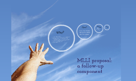 MLLI proposal: a follow-up component