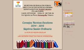 Séptima sesión ordinaria CTE_2014-2015