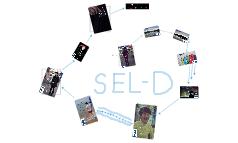 SEL-D