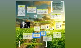 Leonardo Da Vinci, se da cuenta que las imágenes recibidas