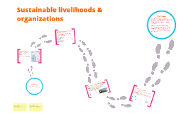 Sustainable livelihoods & organizations