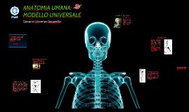ANATOMIA UMANA: MODELLO UNIVERSALE