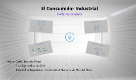 Copy of Copy of Comportamiento de Compra Industrial - Joaquin Negri
