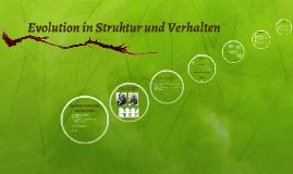 Evolution in Struktur und Verhalten